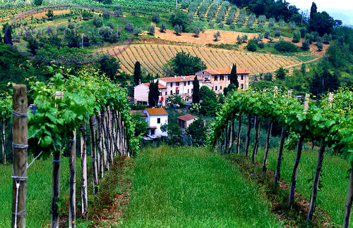 best wine tours in tuscany italy - photo#10